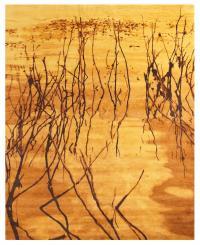 55598 gold waterdance 8x10
