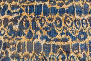 Multi Color Nourison wool Rug 7'7