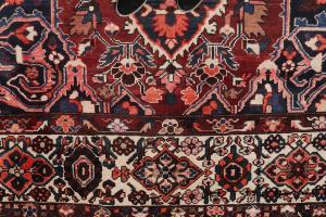 Baktiari Wool Rug 10'8