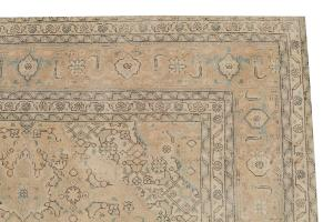 Beige Traditional Rug 6'5