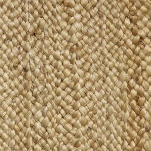 Kochi Collection 686 Wheat