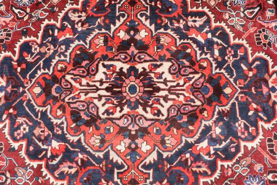 58910 Baktiari Wool Rug 10'8