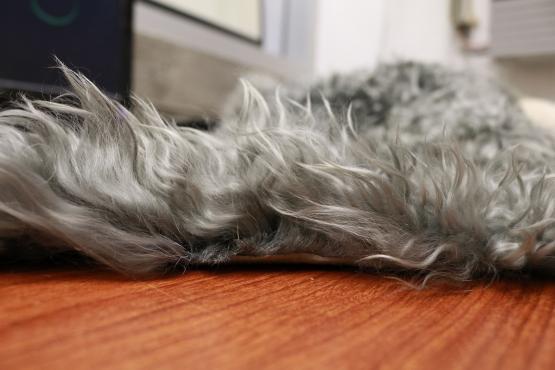 Custom Angora Fur
