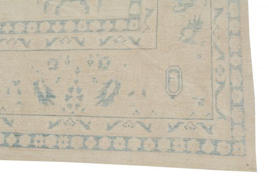 C60470 Traditional Rug 10'x11'11